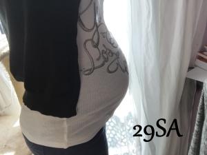 28 SA (3)